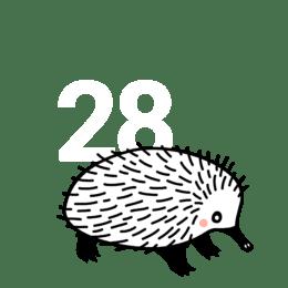 28. tjedan trudnoće