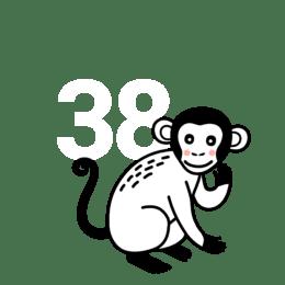 38. tjedan trudnoće